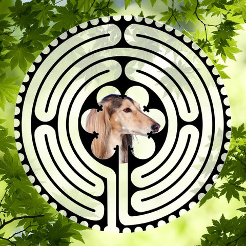 Saluki Light & Dark - Doggy Labyrinth-maze