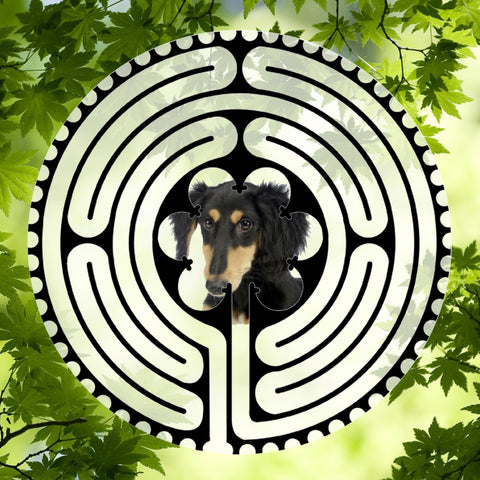 Saluki Puppy - Doggy Labyrinth-maze