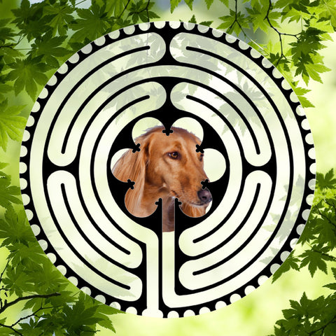Saluki Red - Doggy Labyrinth-maze