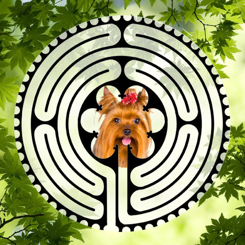 Yorkie Red Bow - Doggy Labyrinth-maze