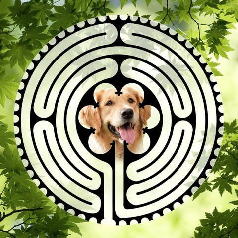 Custom Pet Centered Labyrinth-mazes