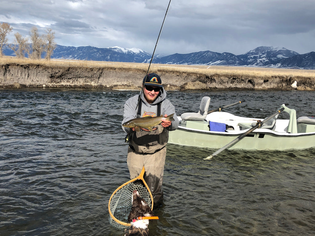 Madison River Fishing Report for April 1st, Hitting Dries!