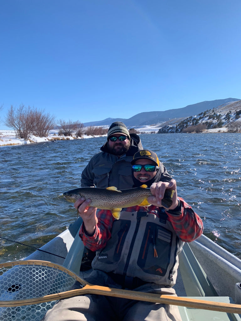 Brown Trout caught using a large stonefly nymph on the Madison River near Ennis, Montana.
