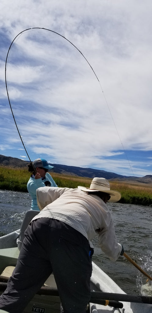 Miss Black hooked up with Owner Oarsman Brian Rosenberg netting the fish during a guided float trip on the Madison River near Ennis Montana