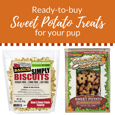 Three Sweet Potato Treats for Dogs