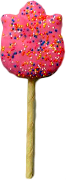 K9 Granola Factory Spring Tulip on a Stick Dog Treats