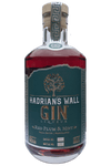 HADRIAN'S WALL PLUM AND MINT GIN LIQUEUR 50CL 20% - Aberdeen Whisky Shop