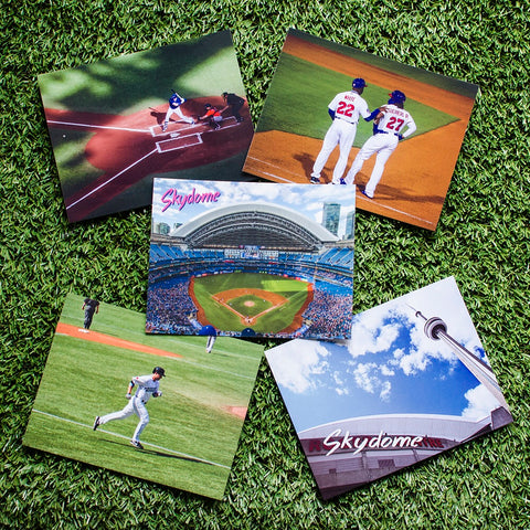 Blue Jay Postcards