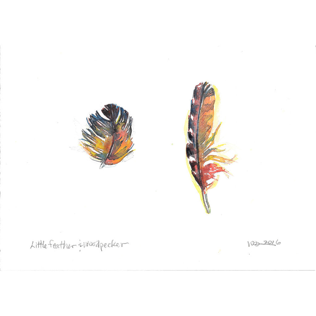 """Little Feather & Woodpecker"""