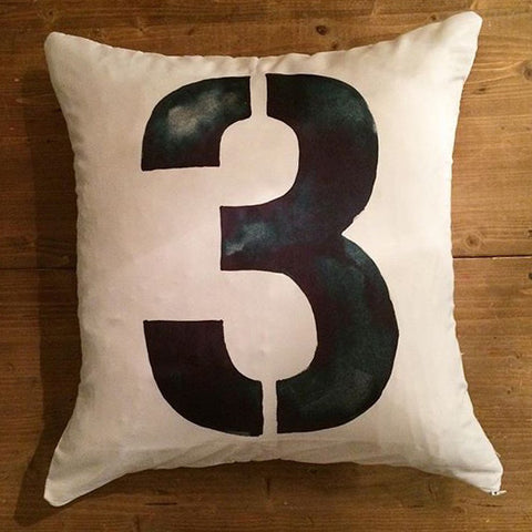 3 - pillow cover