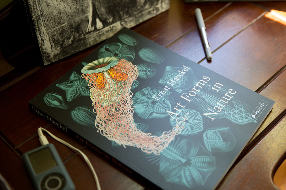 Natural Art Forms book in the studio of Portland, Maine based jewelry designer, Sharon Herrick of Illuminated Me