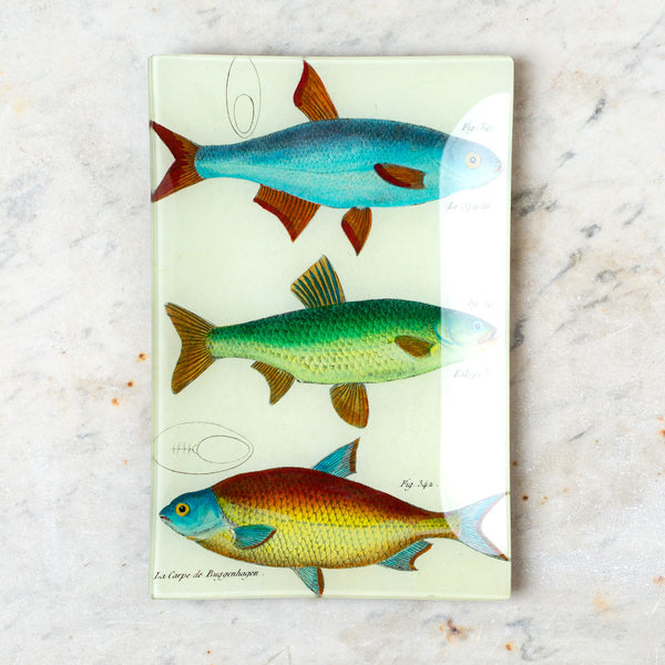 3 fish planche 82 tray-art & decor - decoupage - sea-john derian-k colette