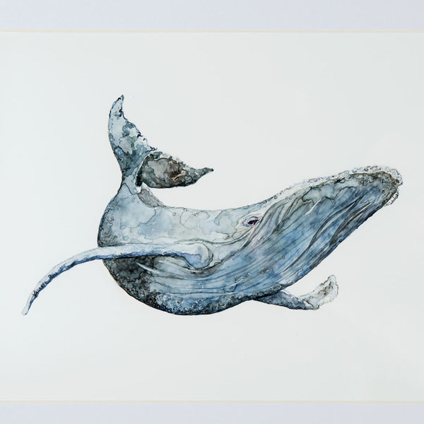 'humpback whale' watercolor painting-art & decor - paintings & prints-valerie paul-Default-k colette