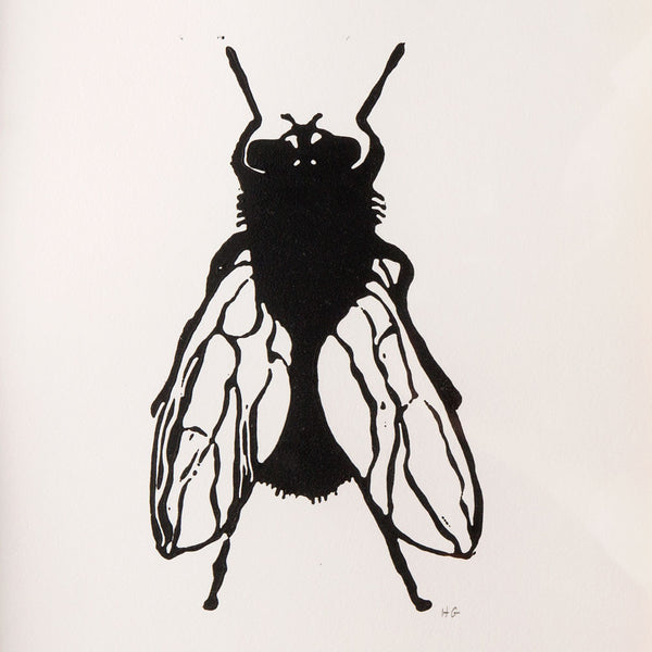 'house fly' linocut print-art & decor - paintings & prints-hugo guinness-Default-k colette