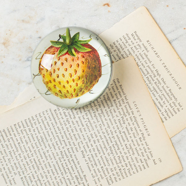 strawberry with script dome paperweight-desktop - paperweights-john derian-k colette