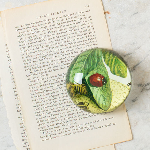 ladybug on a leaf dome paperweight