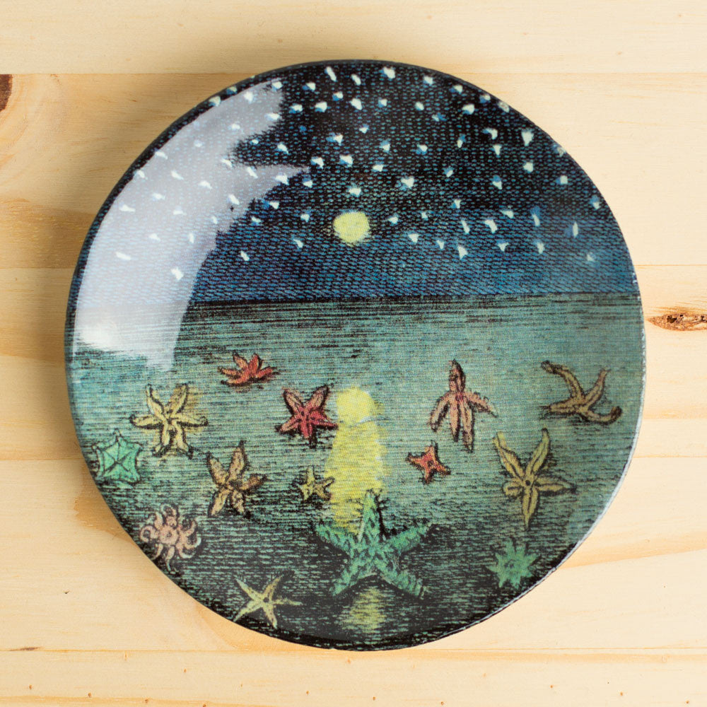 starfish & starry night small plate-kitchen & dining - dinnerware-astier de villatte & john derian-Default Title-k colette