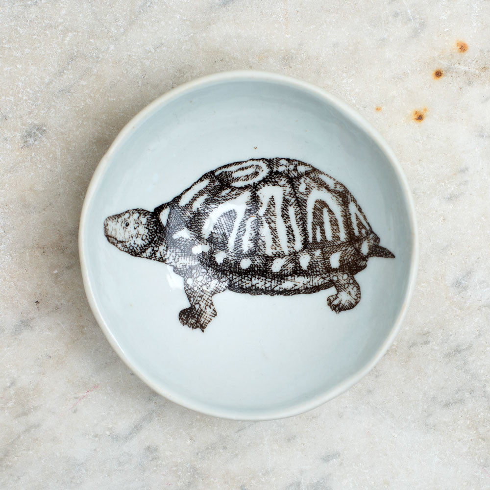 wood grain round dish-art & decor - decorative objects - kitchen & dining - serveware-skt ceramics-box turtle-k colette
