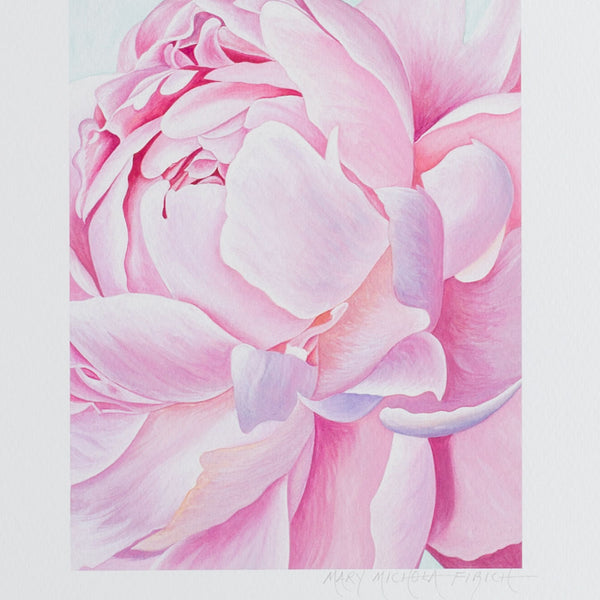 'peony I' giclée print-art & decor - paintings & prints - maine - for her-mary michola fibich-8x10-k colette