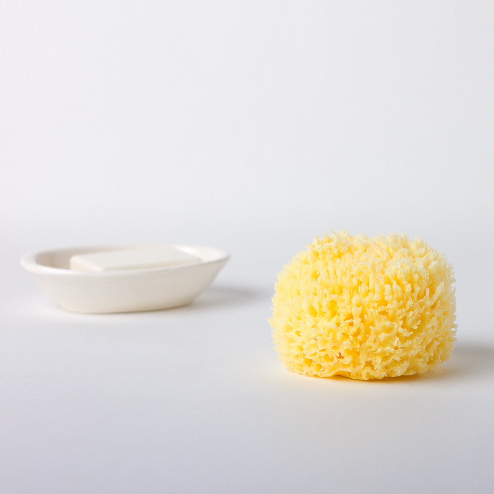 natural sea sponge-apothecary - bath accessories-baudelaire-k colette