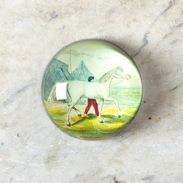 white horse paperweight-art & decor - decoupage - desktop - paperweights-john derian-Default-k colette