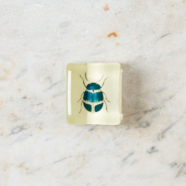 blue beetle charm paperweight