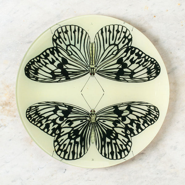 mirrored butterfly round plate-art & decor - decoupage - thank-john derian-k colette