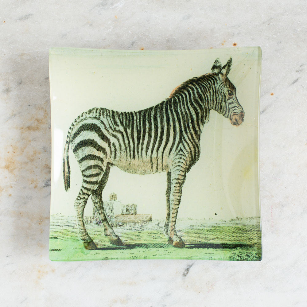 zebra (early animals) un vide poche-art & decor - decoupage-john derian-k colette