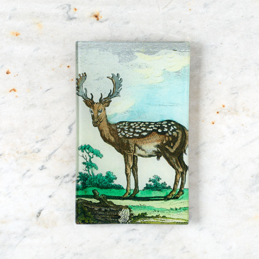 deer tray-art & decor - decoupage-john derian-Default Title-k colette