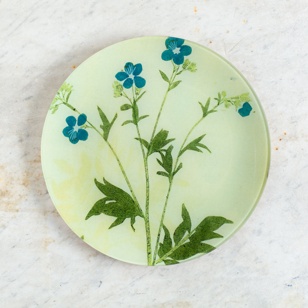 no. 34 lathyrvs (blue sweet pea) pressed leaves round plate-art & decor - decoupage-john derian-Default Title-k colette