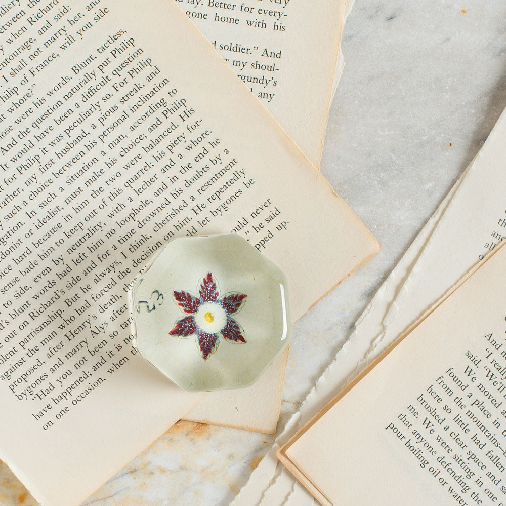 auricula no. 23 charm paperweight-art & decor - decoupage - desktop - paperweights-john derian-Default Title-k colette
