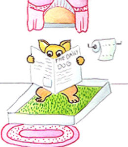 Cartoon dog on toilet reading paper