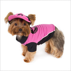 Yorkie wearing Body Glove UV dog shirt