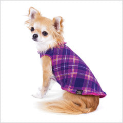 dog shirts, sweaters and hoodies