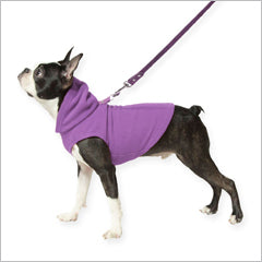 dog harness clothing