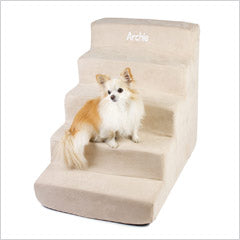 Chihuahua on Pet Stairs