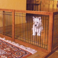 Westie behind dog gate