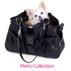 Chihuahua in Petote Metro Carrier