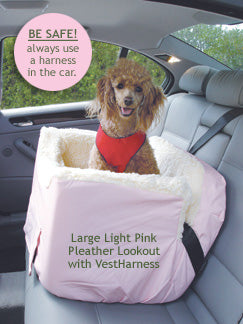 Poodle in Snoozer car seat for dogs