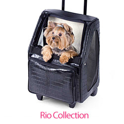 Yorkie in Petote Rio Dog Carrier