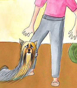 Cartoon - Yorkie pulling on pant leg