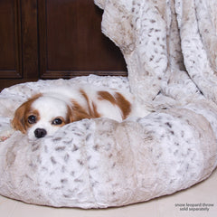 King Charles Cavalier sleeping in Susan Lanci dog bed
