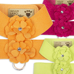 Susan Lanci Tinkies Garden dog harnesses
