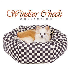 Chihuahua resting in Susan Lanci Windsor Check dog bed