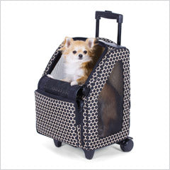 Chihuahua in dog carrier on wheels