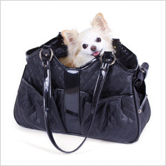 Chihuahua in pet carrier tote
