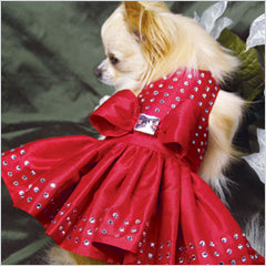 Chihuahua in Susan Lanci Dress