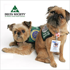 Brussels Griffon Service Dogs