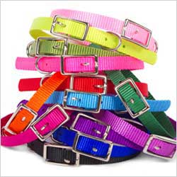 basic buckle collars