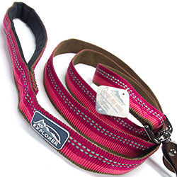 leashes for big dogs